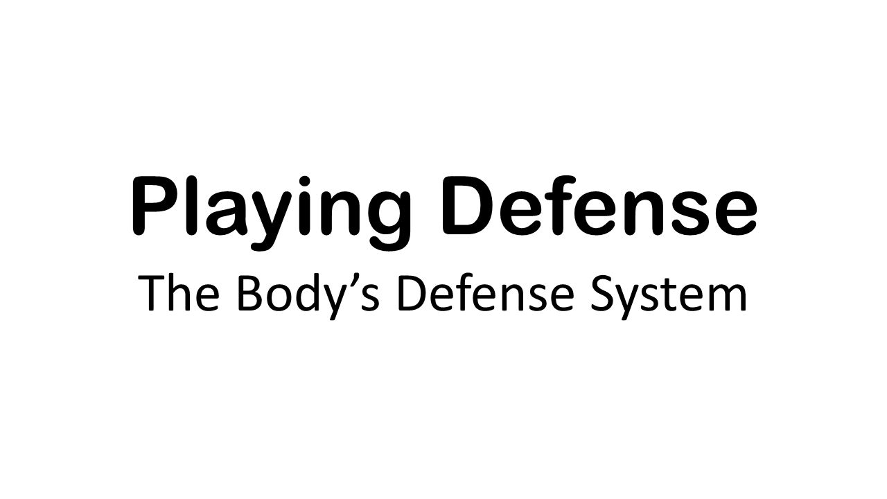 The Bodys Defense System Ppt Video Online Download