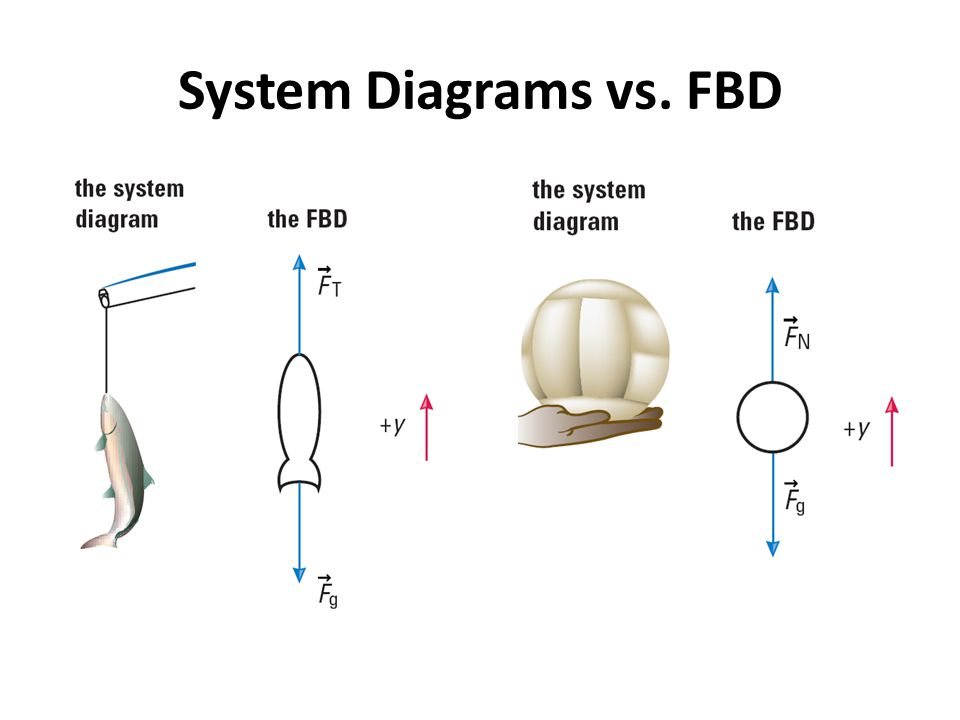 drawing body diagrams and sum the forces