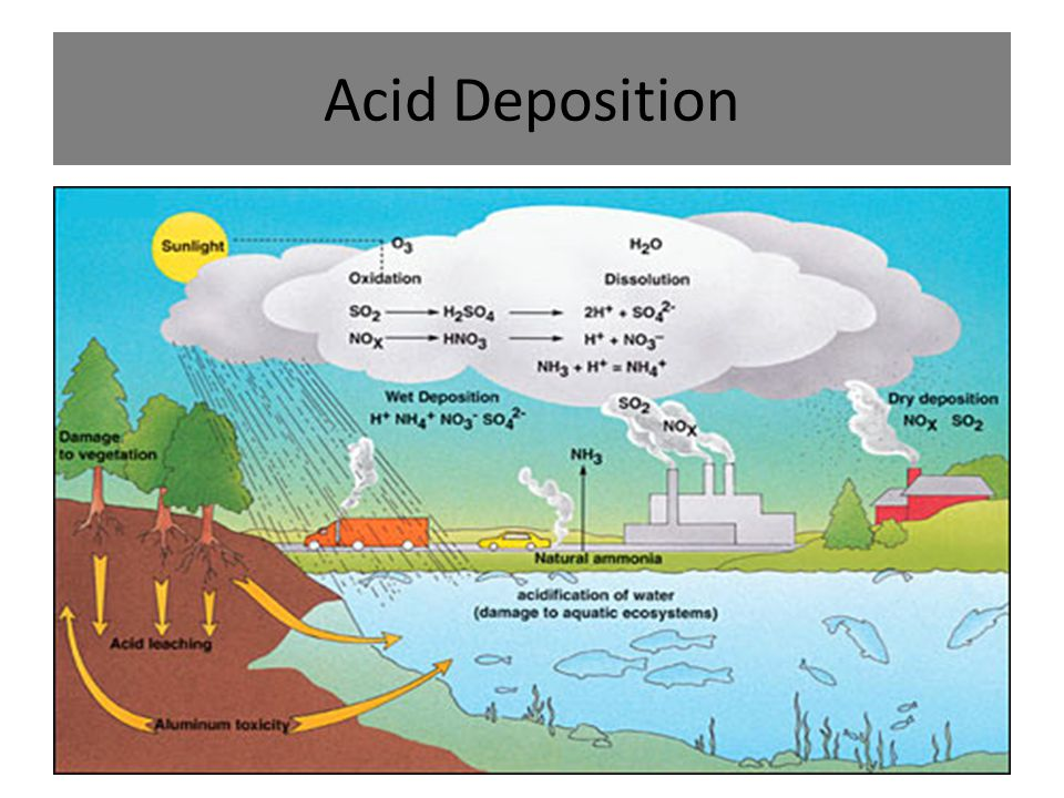 Acid Rain Diagram Pathway Wiring Schematic Diagram