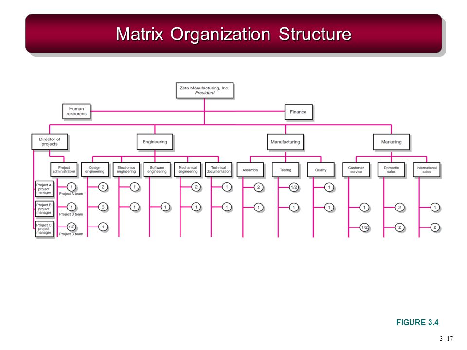 Chapter 3 Organization Structure  Culture - ppt video online download