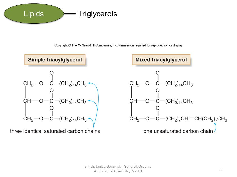 CHAPTER 19 Lipids General, Organic,  Biological Chemistry - ppt