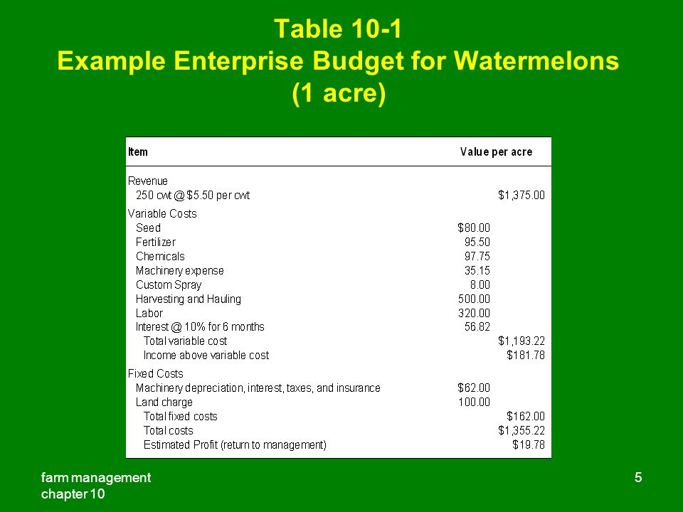 Chapter 10 Enterprise Budgeting - ppt video online download