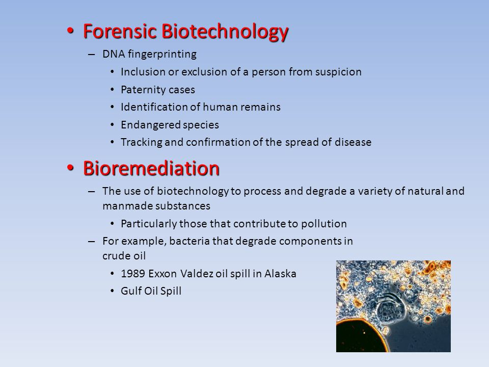 What is Biotechnology? Biotechnology is the study and manipulation