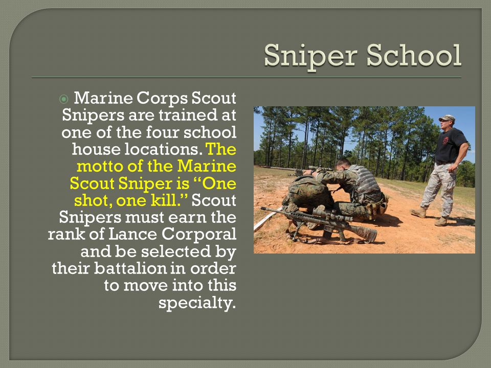 Marine Scout Sniper By Jake Willeford - ppt download