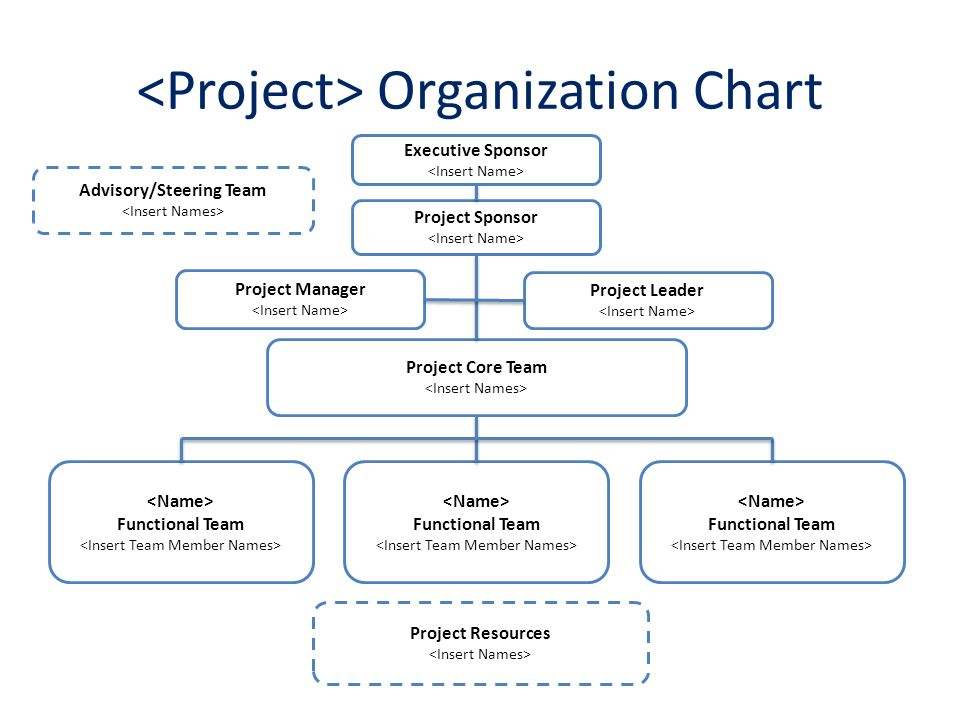 Project Organization Chart Roles  Responsibilities Matrix - ppt - project organization chart