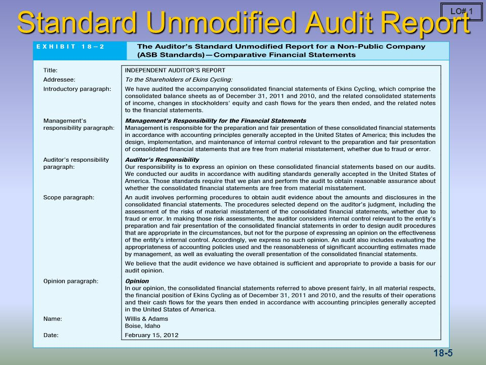 The purpose of an audit report Research paper Academic Service - audit report