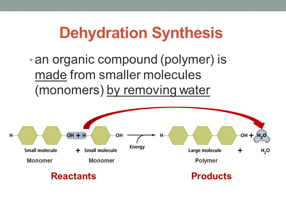 Dehydration synthesis reaction Homework Writing Service hspaperrezu - synthesis reaction