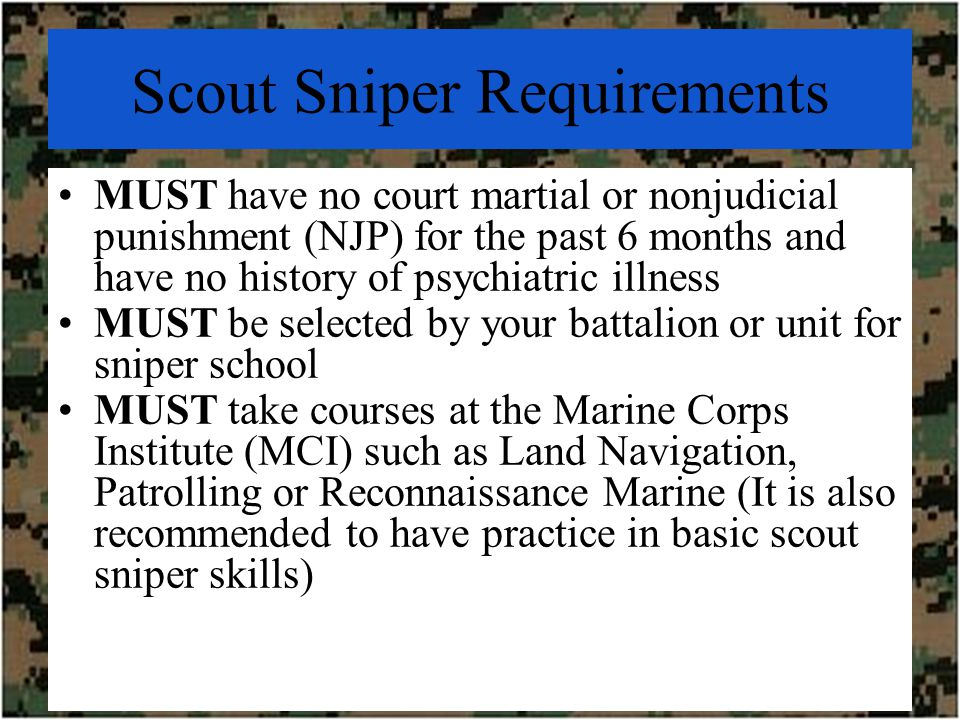 Scout Snipers in the USMC - ppt video online download