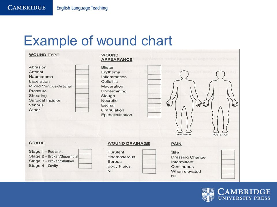 Wounds, Charts and Medication - ppt video online download