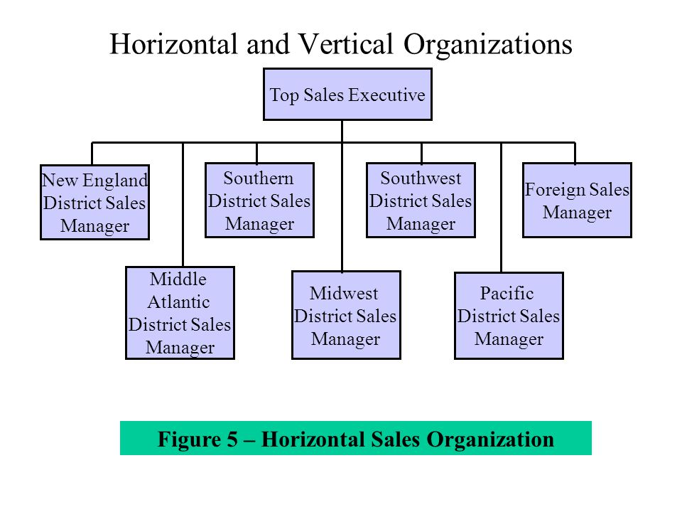 Introduction and Functions of Sales Organization - ppt video online