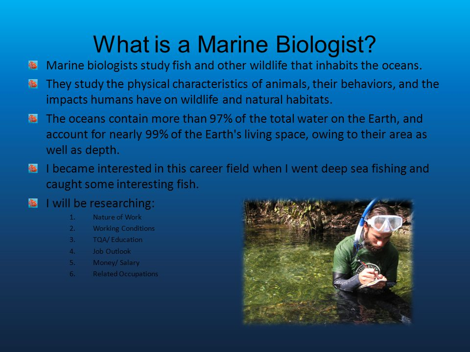Marine Biology 5/8/2014 1st Hour Career Technology - ppt video