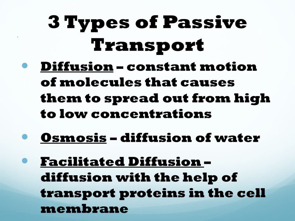 Homeostasis, Osmosis, Transport Unit 6 \u2013 Chapter 5 - ppt download
