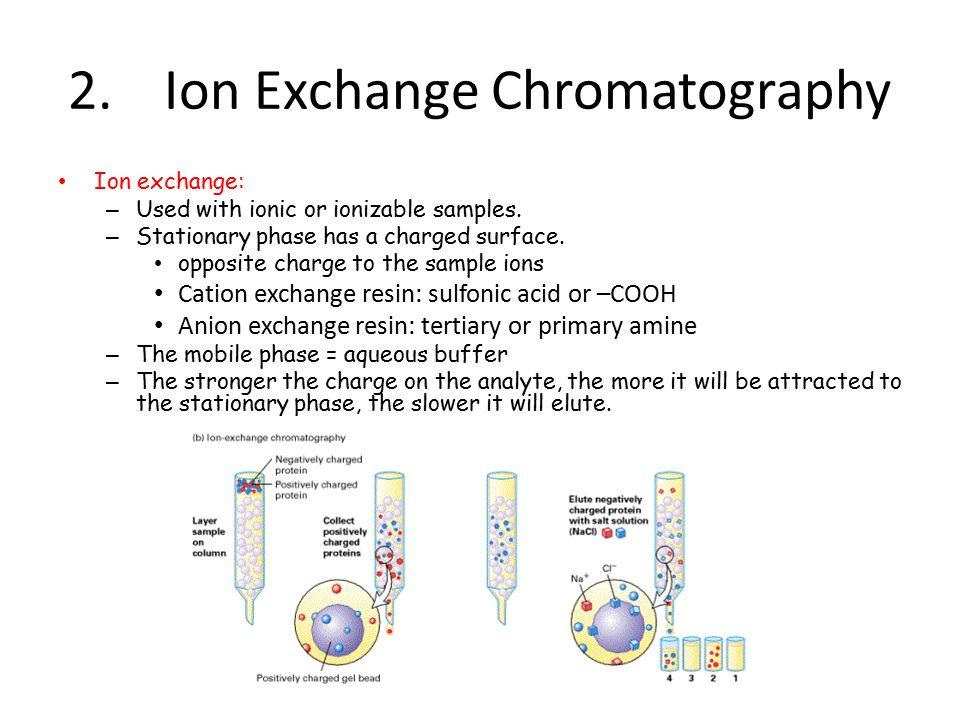 Ion exchange chromatography College paper Academic Service - cation exchange chromatography