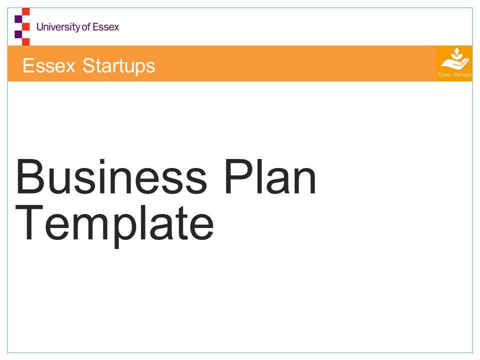 Business Plan Template - ppt video online download