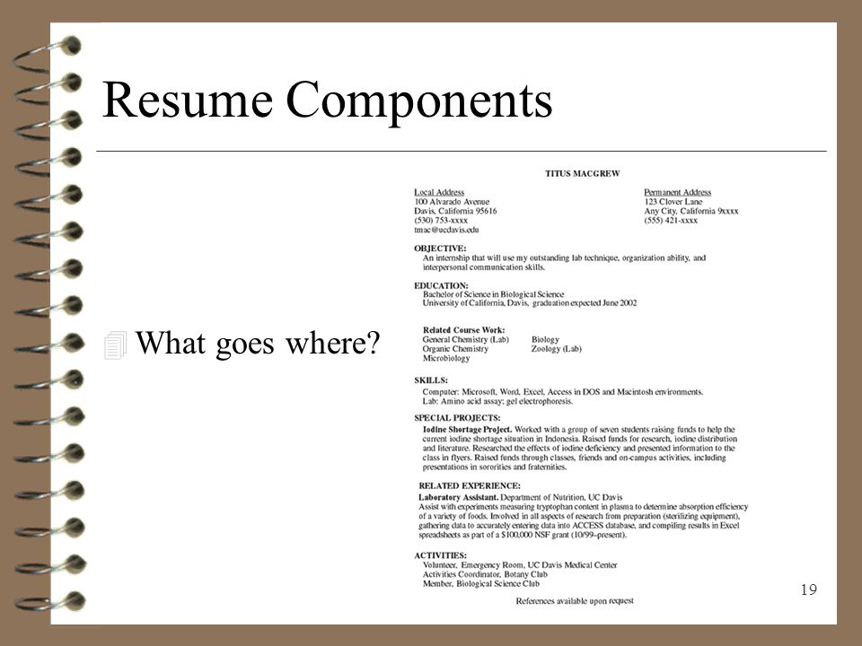 RESUME WRITING Presenting Yourself on Paper - ppt video online download