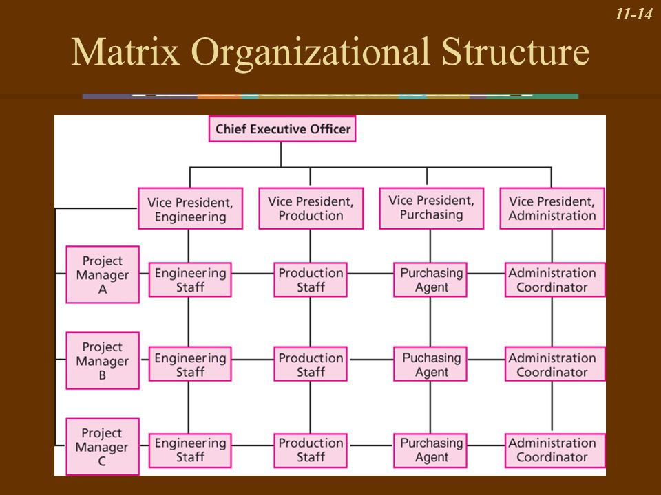 Organizational Structure - ppt video online download