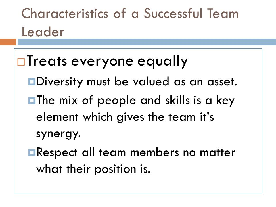 what are the qualities of a good team leader hgvi