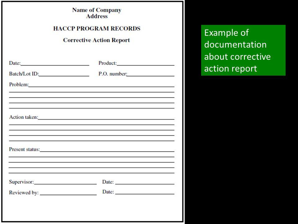 After Action Plan Template u2013 Glorifiedjanitorinfocorrective