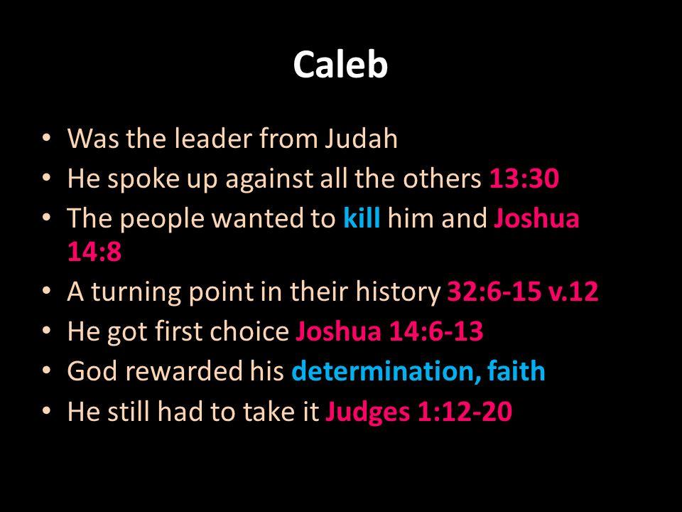 Caleb+Was+the+leader+from+Judahjpg (960×720) Caleb-Symbolic of - senior pastor resume