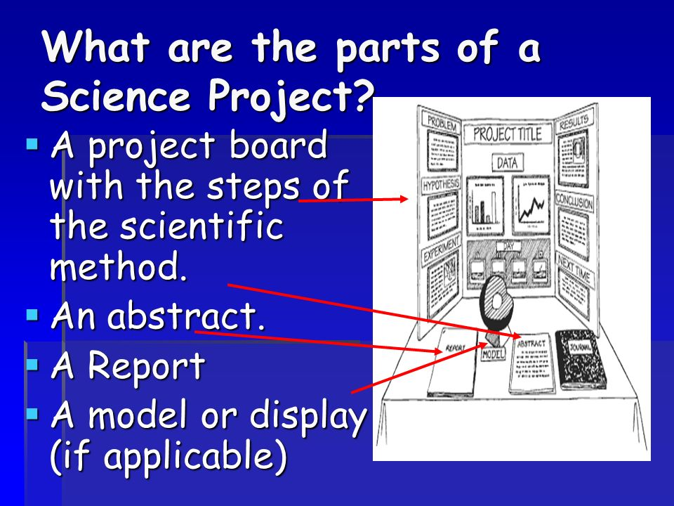 All about completing a Fair Project - ppt download