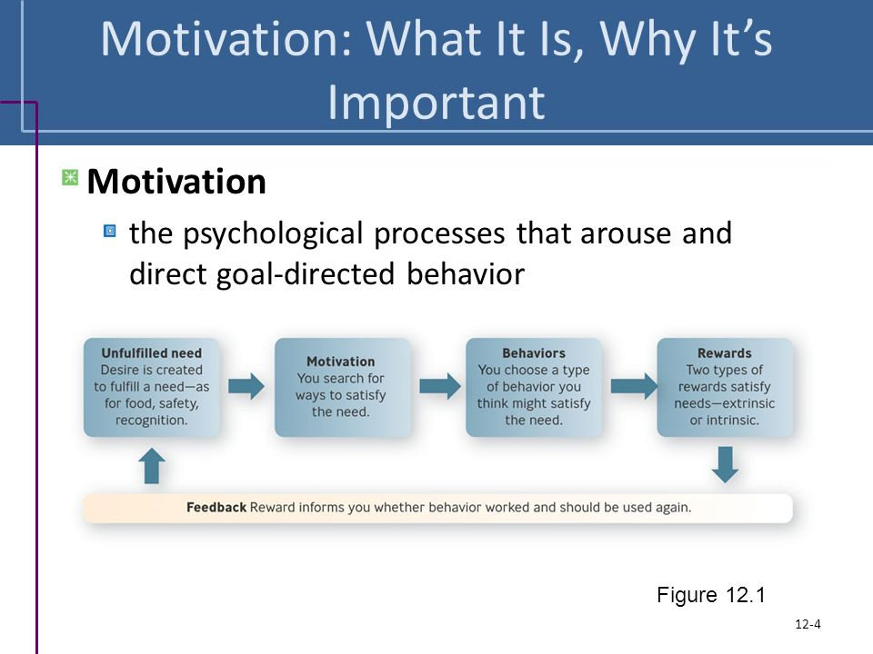 Motivating Employees Achieving Superior Performance in the Workplace