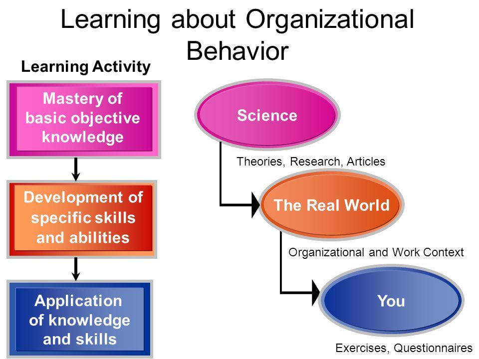 Organizational Behavior - ppt video online download