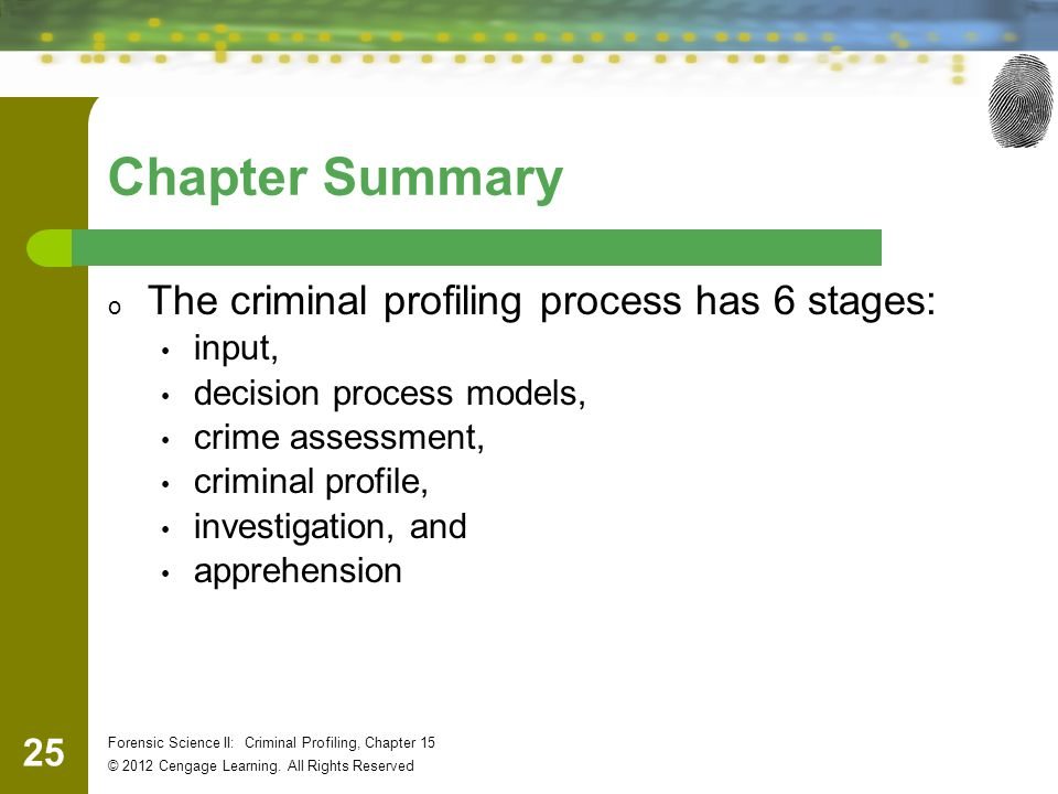 Chapter 15 Criminal Profiling - ppt download