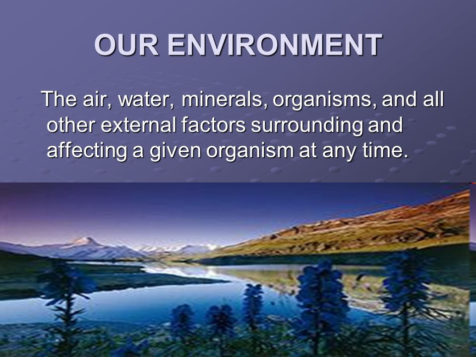 Environmental Pollution - ppt video online download