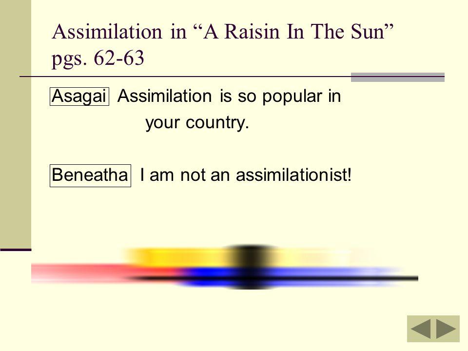 Assimilation essay raisin sun Custom paper Service