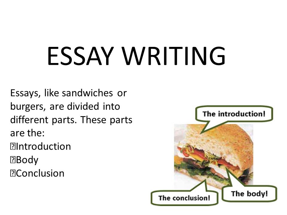 ESSAY WRITING Essays, like sandwiches or burgers, are divided into