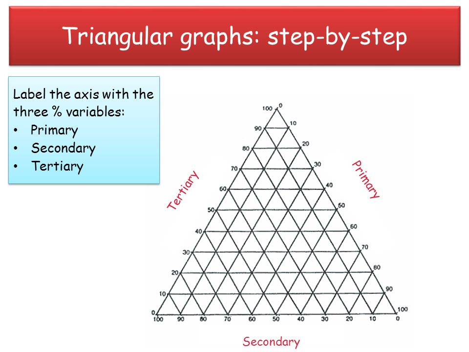 Unit 2 Geographical Skills - ppt video online download
