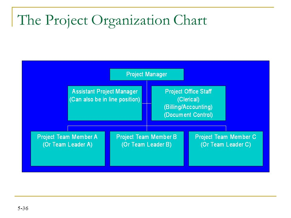 INEN261 Chapter # 5 The Project and the Organizational Structure