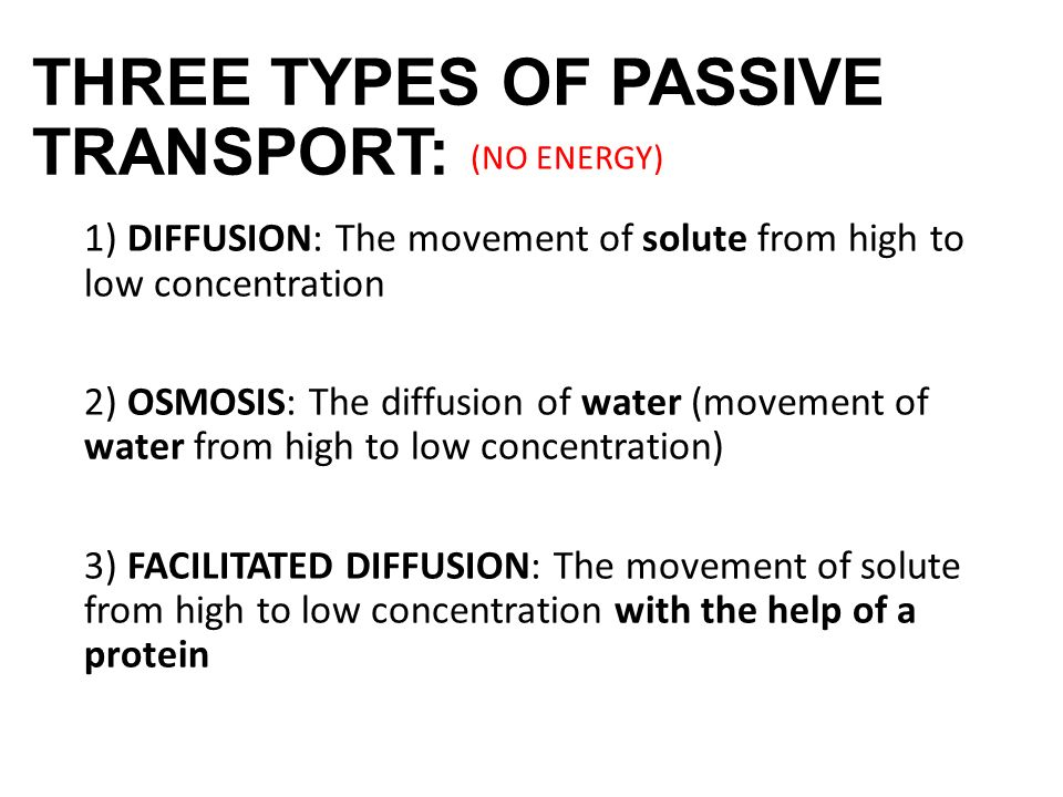 3 Types Passive Transport