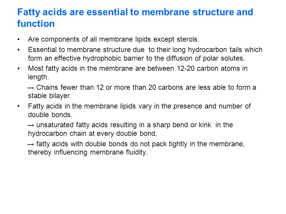 Membranes Structure and Function - ppt video online download