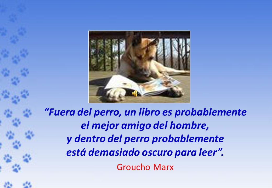 "Libros De Groucho Marx Vladimir Klush : ""book Of Books"" - Ppt Descargar"