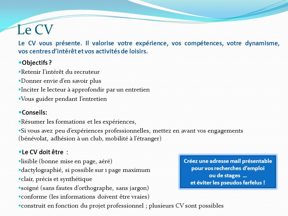 experience professionnelles cv orthographe