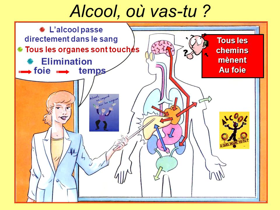 Biere Nature Et Decouverte L'alcool Fruit De La Nature… Et Du Hasard. - Ppt Video