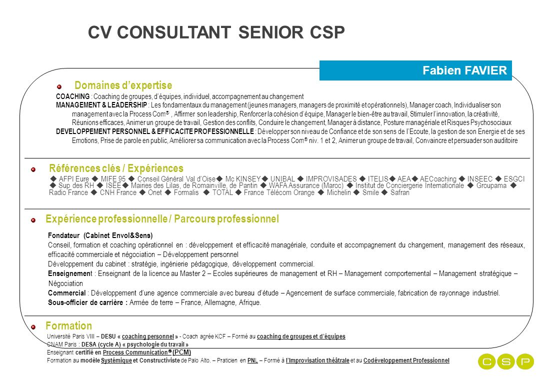 experience professionnel cv armee