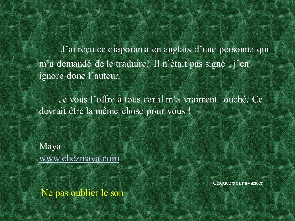 mots francais traduit en anglais cv