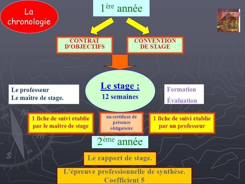 chronologie cv formation bts