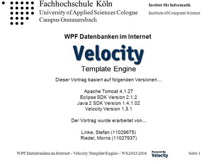 Velocity Template Engine | ophion.co
