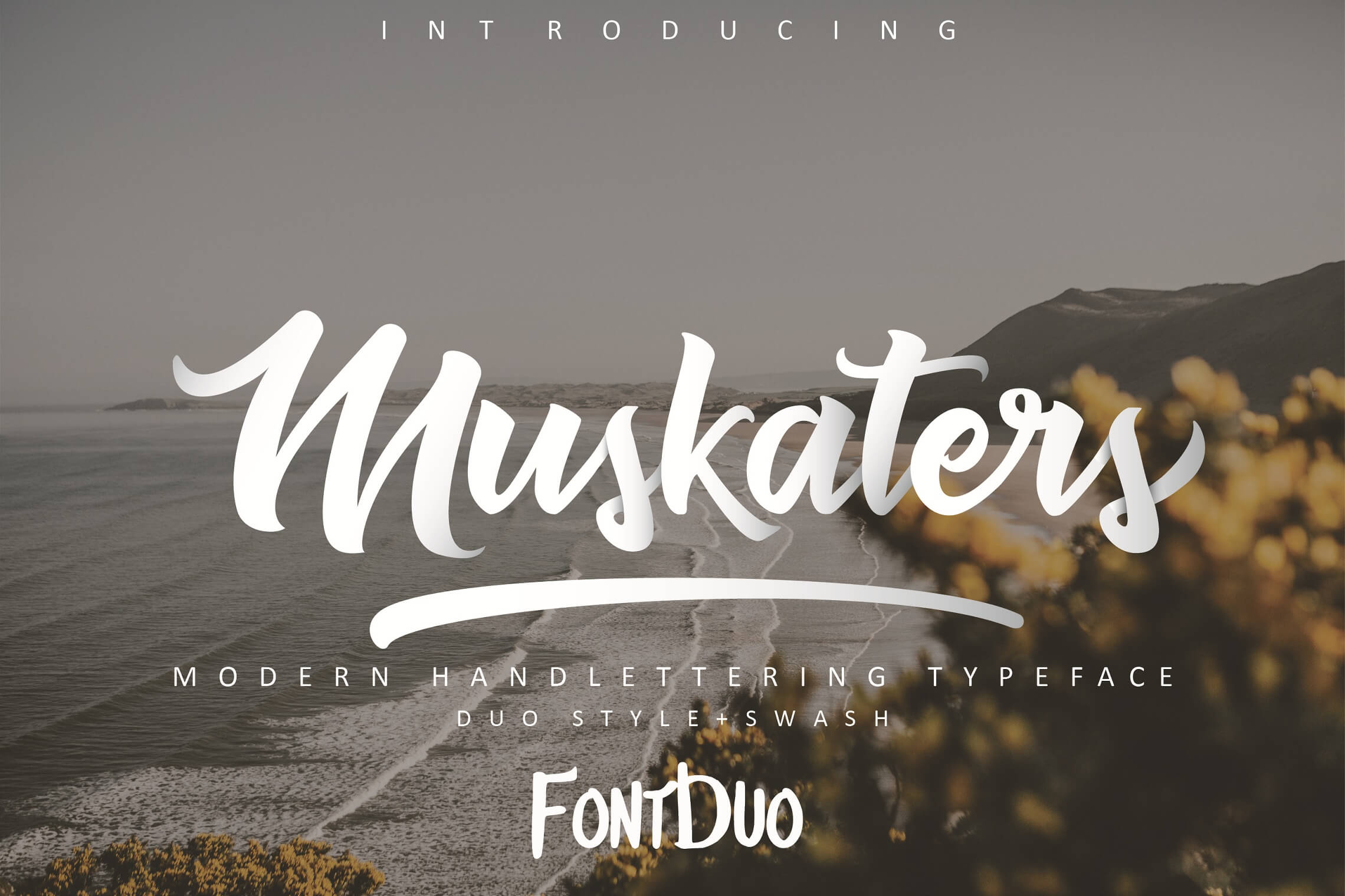 Lucida Calligraphy Regular Font Free Download 30 Gorgeous Free Handwritten Fonts Every Designer Should Have