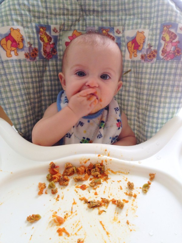 Homemade Baby Food Recipes and Kid Friendly Freezer Meals