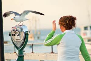 xp3-dot-us_DSC_3868-seagull-and-girl (Photography by Holger)