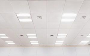 天井画像2
