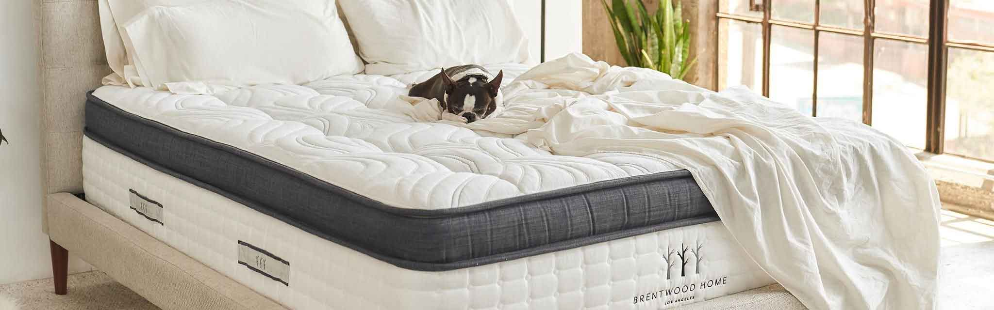 Best Mattress Toppers Australia Costco