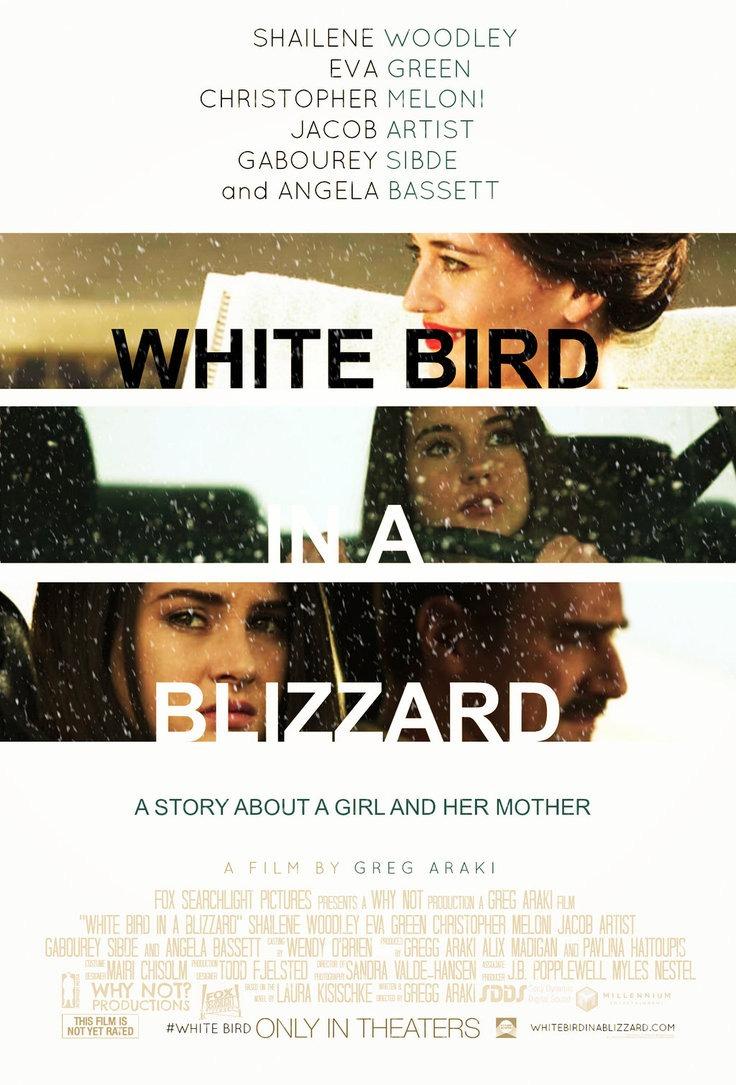 936full-white-bird-in-a-blizzard-poster