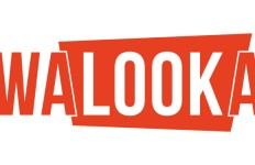 Walooka_Logo_609x366_jpg