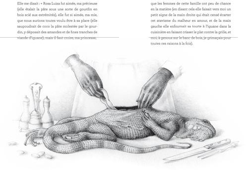 La tourte à l'iguane... l'une des images étranges et terrifiantes du livre. Illustration de Véronique Dorey.
