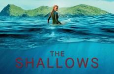 the-shallows-577cd688b1922